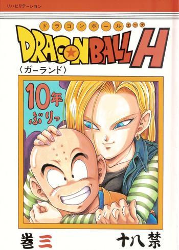 dragonball h maki san cover 1