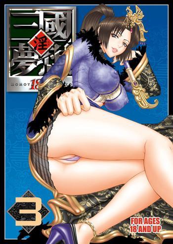 in sangoku musou 3 cover