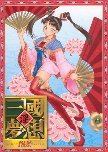 in sangoku musou cover 1